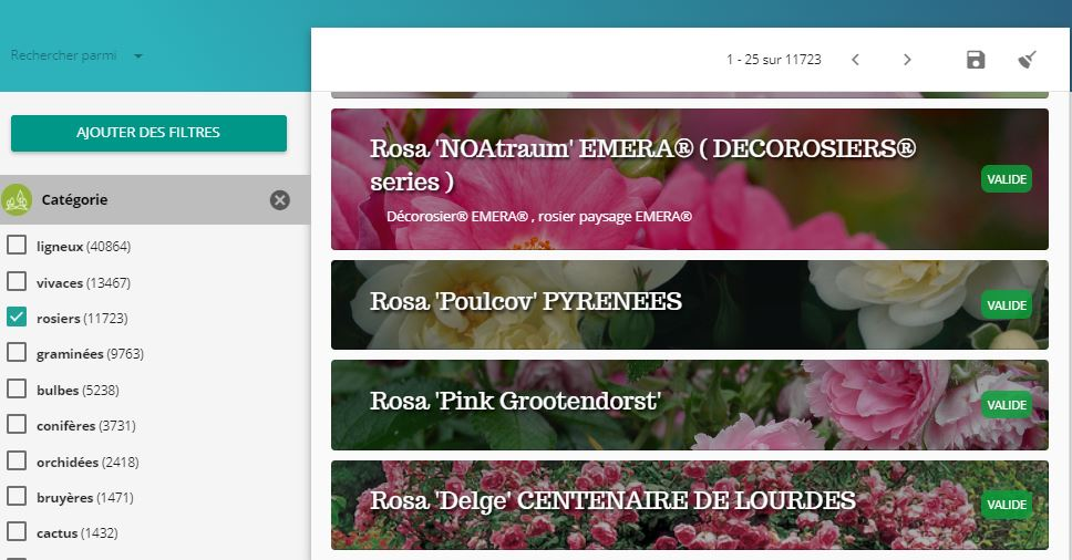 Capture-recherche-categorie-rosiers